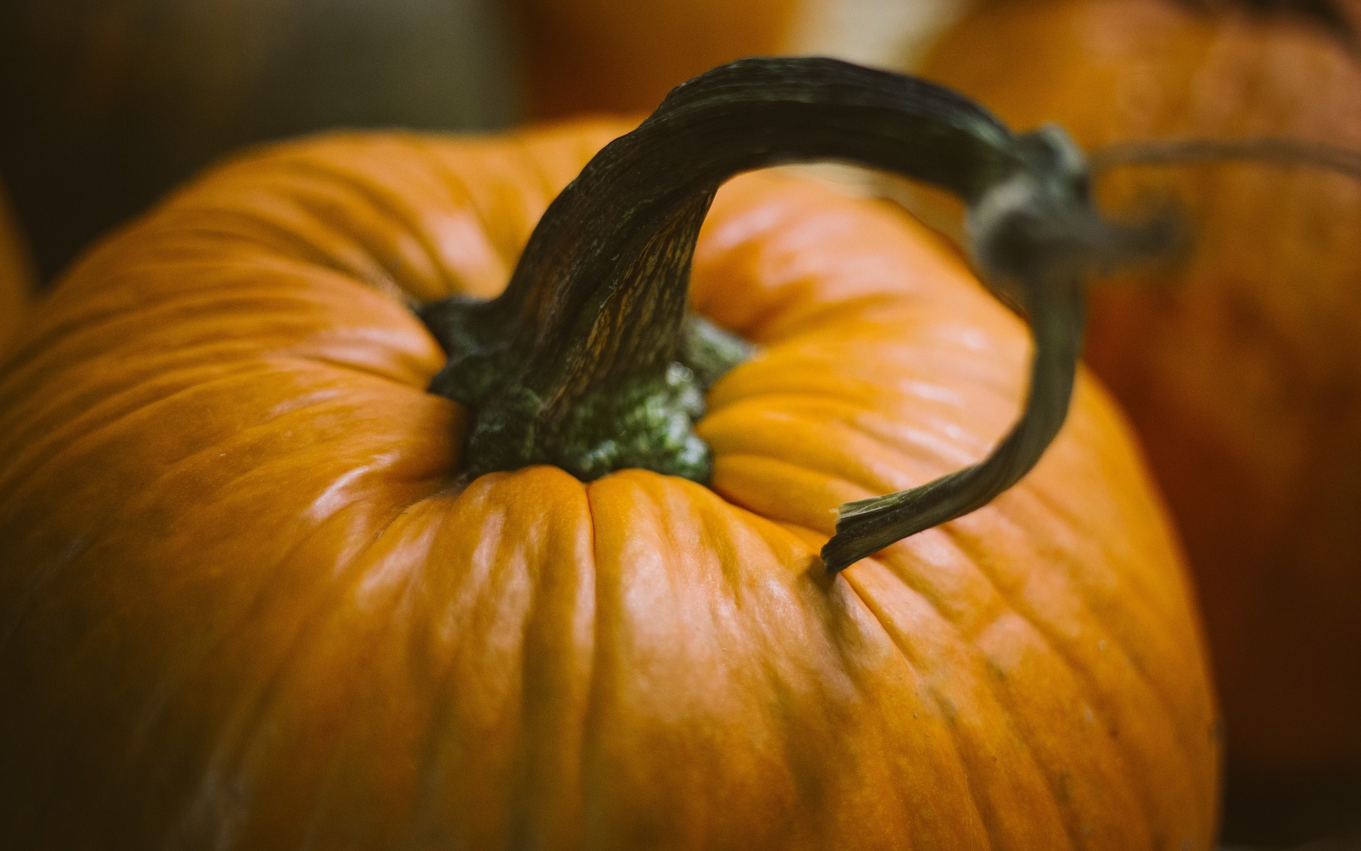 Pumpkins: Benefits and Nutrition Facts